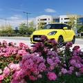 SUZUKI Swift Sport Hybrid: Zölddé vált méhecske