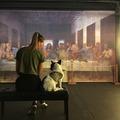 Nyári élmények a Leonardo kiállításon