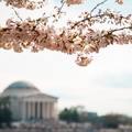 Washingtont egyszer mindenkinek látnia kell