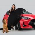 Új márkanagykövet a vadonatúj Toyota Yaris élén