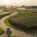 Sportos kirándulás a Boden-tó körül a háromajtós MINI Cooperrel