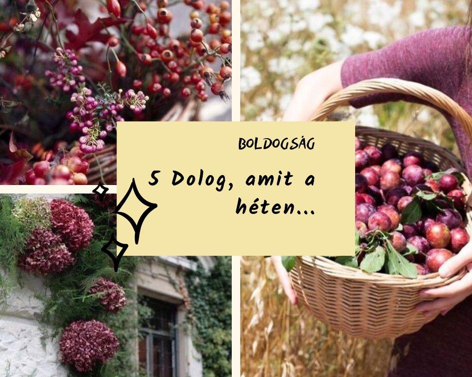 boldogsag_12.jpg