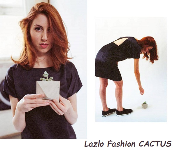 lazlo_cactus3.jpg