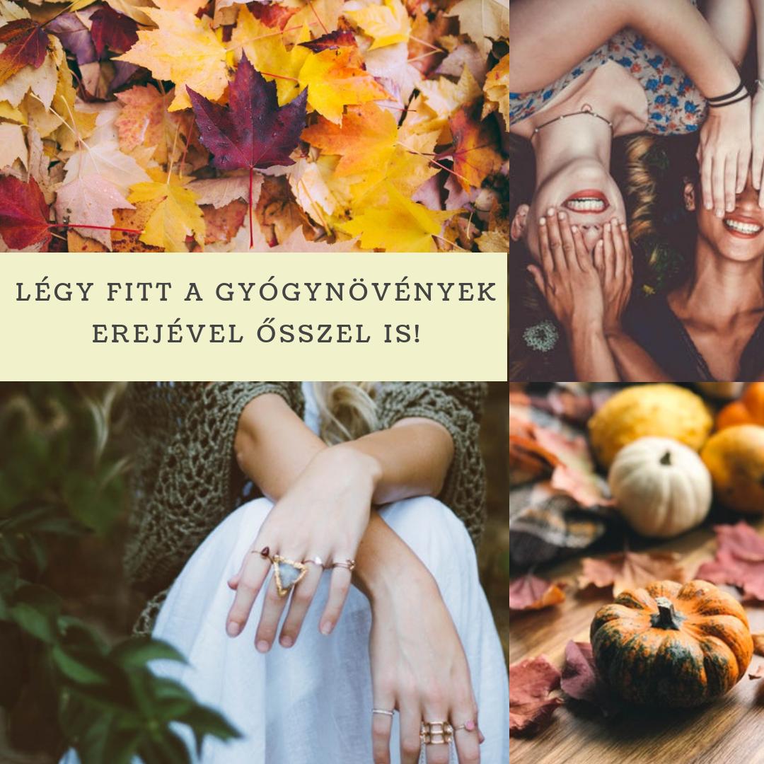 legy_fitt_a_gyogynovenyek_erejevel_osszel_is.png