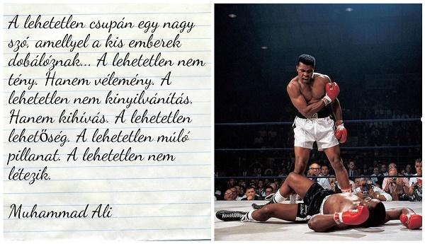 ökölvívás idézetek 5 felejthetetlen idézet Mohamed Alitól   VoilaMode