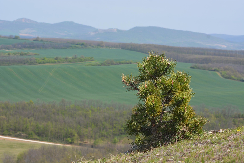 kilátás a Vas-hegyről