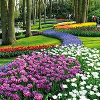 Tavaszcsalogató: botanikus kertek