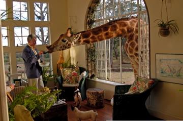 Különleges szállodák - 1. rész: Csak természetbarátoknak!