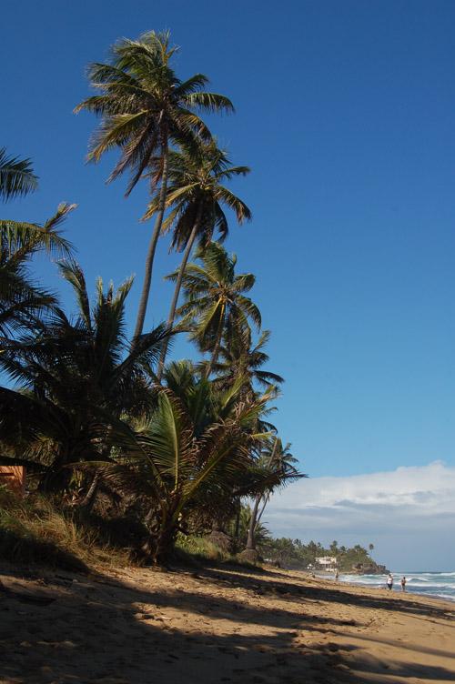 Keddre: Puerto Rico