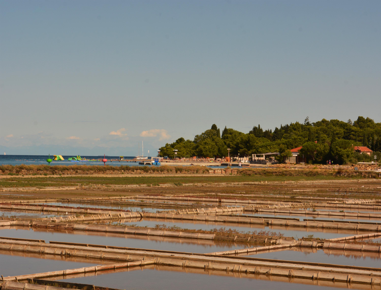 sólepárlók, ahol 700 éve termelik ki a Piran gazdagságát megalapozó 'fehér aranyat'