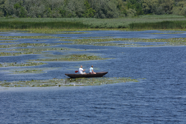 Tiszavirág Tanösvény - csónakázás a Göbén