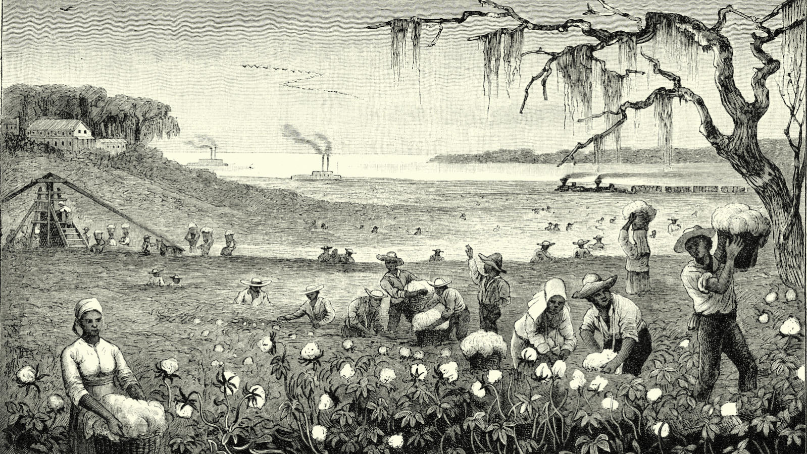 slavery-american-south-1598x900.jpg