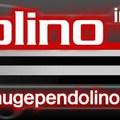 Gyűjtés Pendolinora