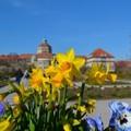 Beköszöntött a Tavasz!