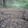 Seggfejek az erdőben 4.