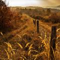 Melyik a legszebb évszak Magyarországon? 30 gyönyörű képben megmutatjuk