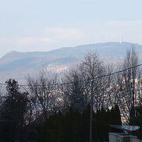 Teszkógazdaságos túra a Budai-hegységben