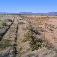 Vonuló csordákkal az elsivatagosodás ellen