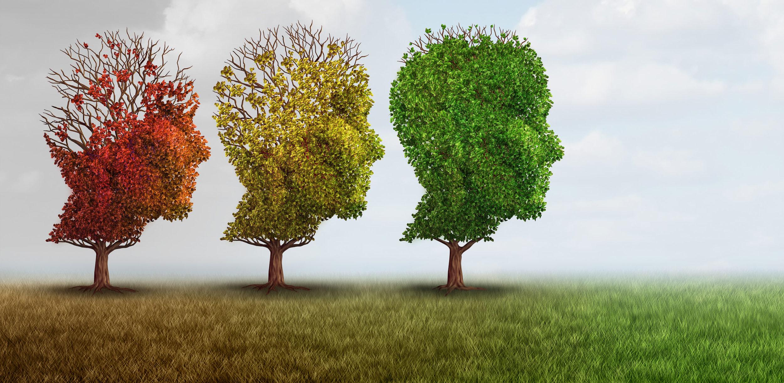 dementia-cropped-e1511819146715.jpg