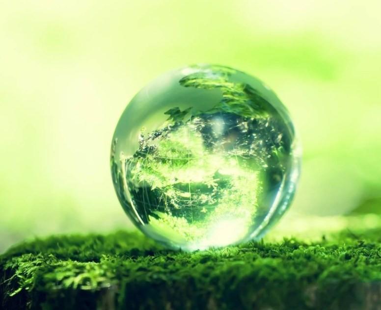 3d-green-world-image.jpg