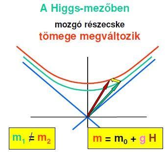 5-Hmezo.jpg