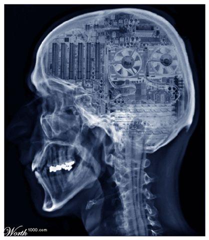 brain_as_computer_252.jpg