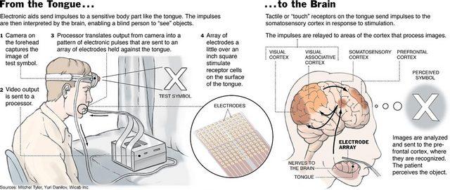 brain_interface.jpg