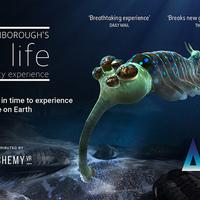 David Attenborough PS VR-on