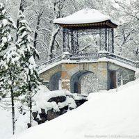Egy park téli álma