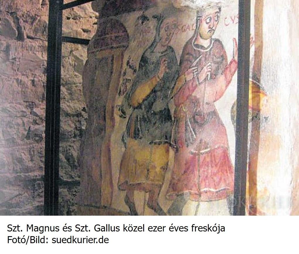gallus_k.jpg