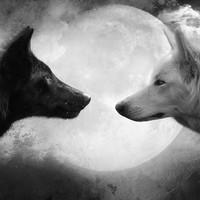 A két farkas tanmeséje