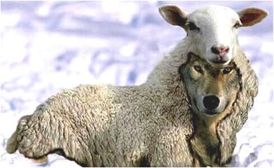 wolf-sheep.jpg