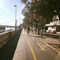 Dunapart, vagy erdő? Te hol futsz reggel? #wadkanz #wadkanzcrew #wadkanzmultisport