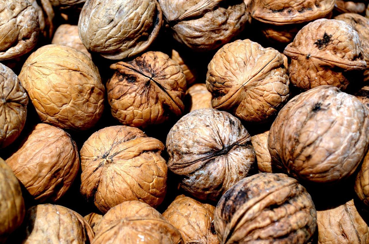 walnut-165026_1280.jpg