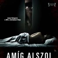 Amíg alszol (Mientras Duermes, 2011)