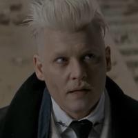 A Harry Potter-előzményfilm rendezője megvédte Johnny Deppet