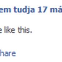A Facebook helyzete Magyarországon (2010, nyár)