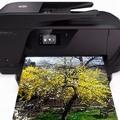 HP nyomtató patron széles választékban!
