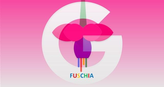 google fuschia oeracios rendszer