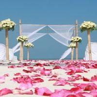 Feeling Esküvői Dekoráció