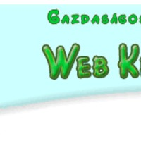 Napi rokon: webszemét lerakó
