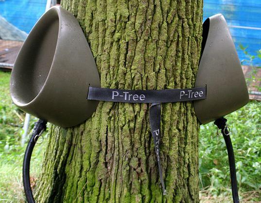 p-tree1.jpg