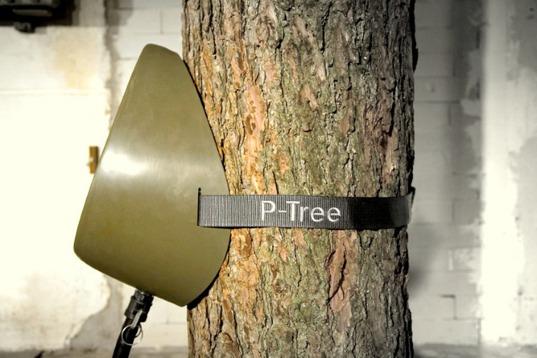 p-tree2.jpg