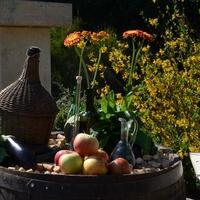 A sógorék már a kertben vannak - egy igazán különleges rendezvény képei