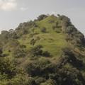 9. Dambulla és Kandy