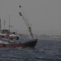 13. Matara - A bálnanéző túra