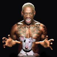 Rodman 1 millió dolláros rúgása