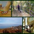 Novemberi nyár Balatonon