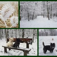 ... és itt a hó