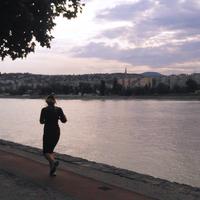 Motiváló – Nyúlj a nyúlcipőért!